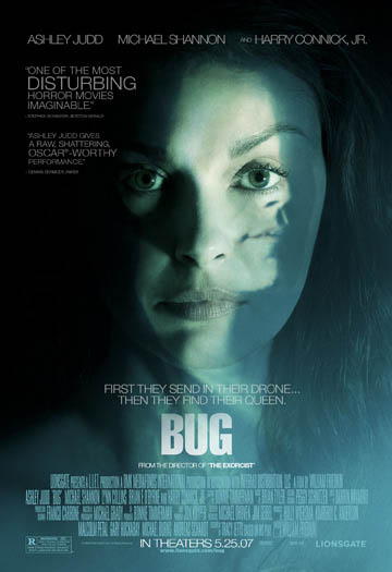 Bug Photo 10 - Large