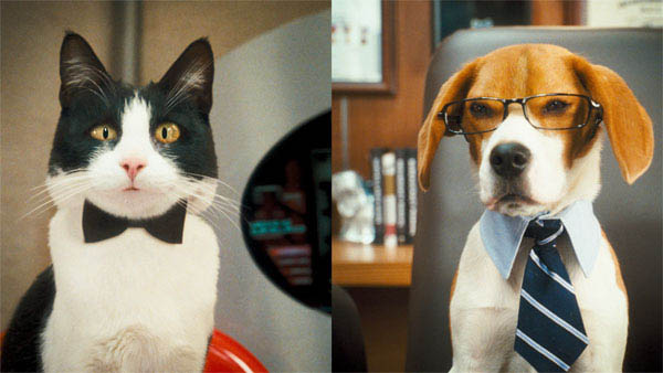 Cats & Dogs: The Revenge of Kitty Galore Photo 16 - Large