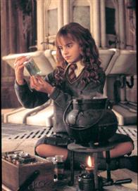 Harry Potter and the Chamber of Secrets Photo 37