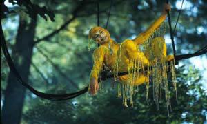 Cirque Du Soleil: Journey Of Man In Imax 3D Photo 9 - Large