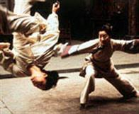 Crouching Tiger, Hidden Dragon Photo 16