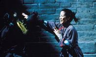 Crouching Tiger, Hidden Dragon Photo 8