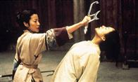 Crouching Tiger, Hidden Dragon Photo 6