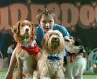 Daniel and the Superdogs Photo 12