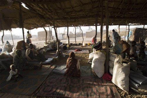 Darfur Now Photo 20 - Large
