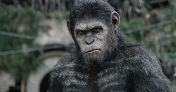 Dawn of the Planet of the Apes Photo 4 - Large