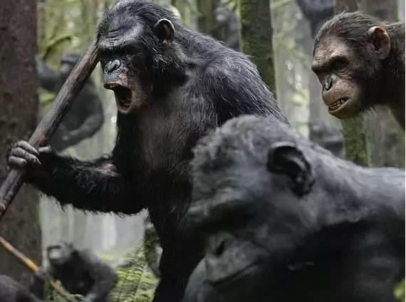 Dawn of the Planet of the Apes Photo 9 - Large