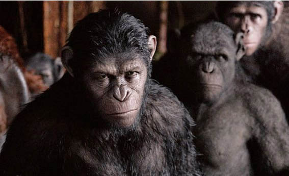 Dawn of the Planet of the Apes Photo 7 - Large