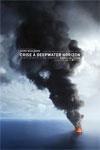 Crise à Deepwater Horizon