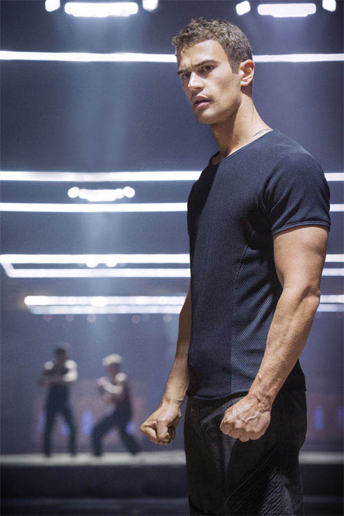 Divergent Photo 15 - Large