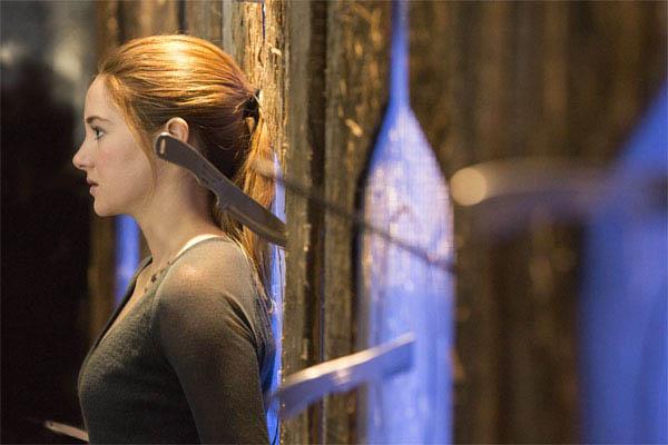 Divergent Photo 2 - Large