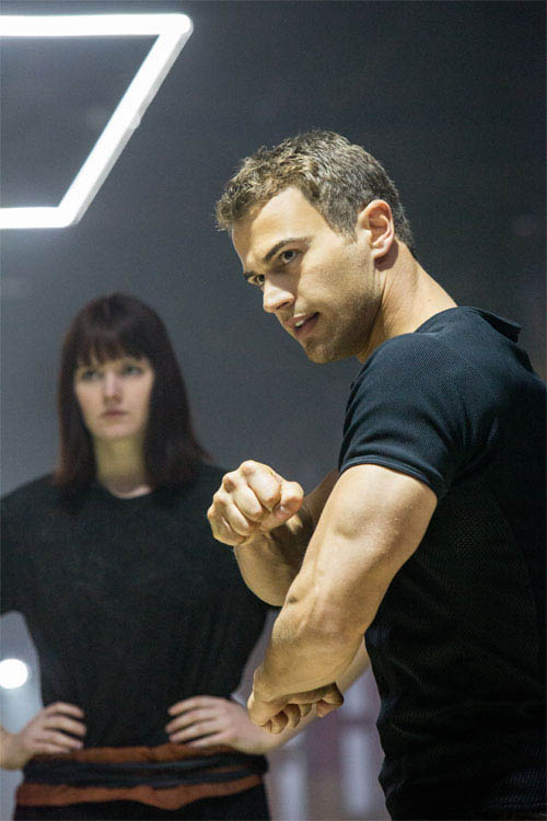 Divergent Photo 16 - Large