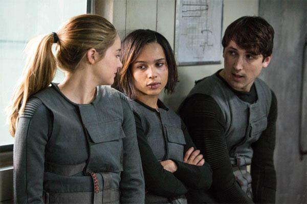 Divergent Photo 4 - Large