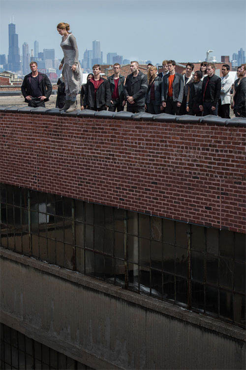 Divergent Photo 13 - Large