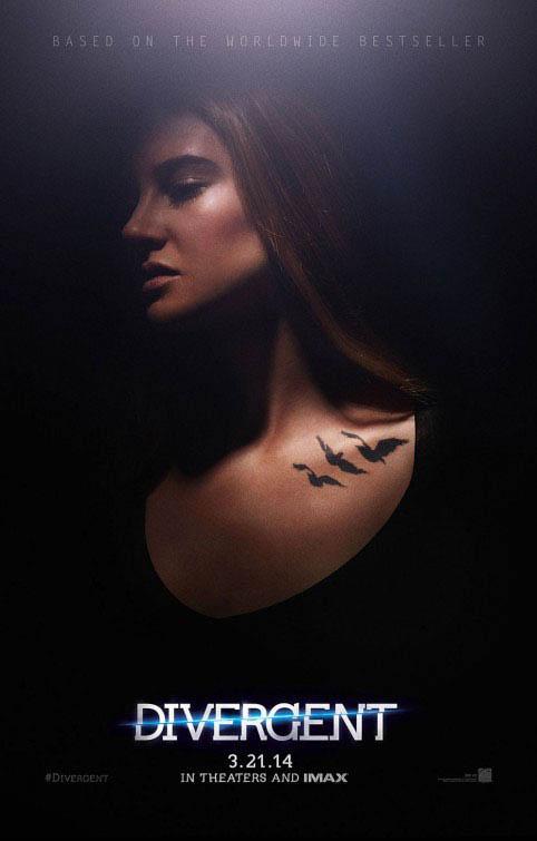 Divergent Photo 18 - Large