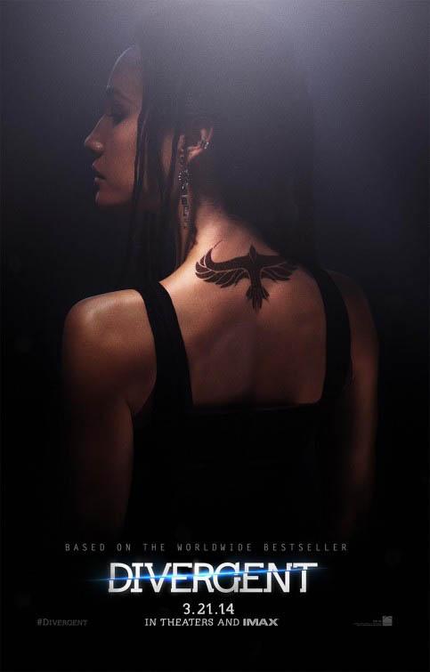 Divergent Photo 20 - Large