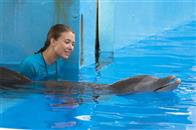 Dolphin Tale Photo 18