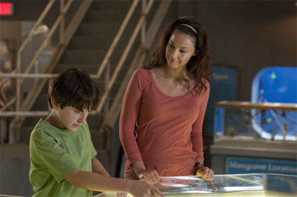 Dolphin Tale Photo 10 - Large