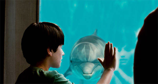 Dolphin Tale Photo 1 - Large