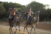Kangaroo Jack Photo 9