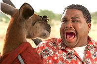 Kangaroo Jack Photo 10