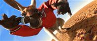 Kangaroo Jack Photo 2