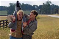 Dumb and Dumber To Photo 6