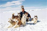 Eight Below Photo 10
