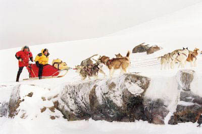Eight Below Photo 3 - Large
