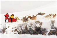 Eight Below Photo 3