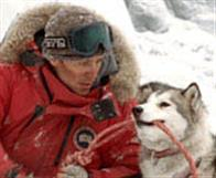 Eight Below Photo 19