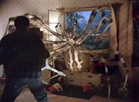 Eight Legged Freaks Photo 12