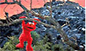 The Adventures Of Elmo In Grouchland Photo 5 - Large