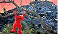 The Adventures Of Elmo In Grouchland Photo 5