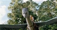 Eragon Photo 8