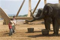Evan Almighty Photo 8