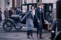 Fantastic Beasts and Where to Find Them Photo 28