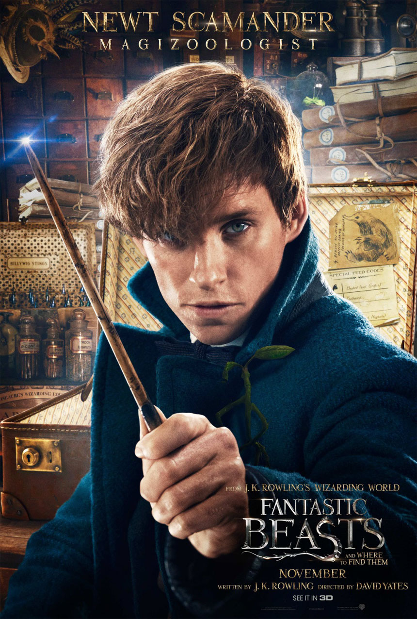 Fantastic Beasts and Where to Find Them Photo 14 - Large