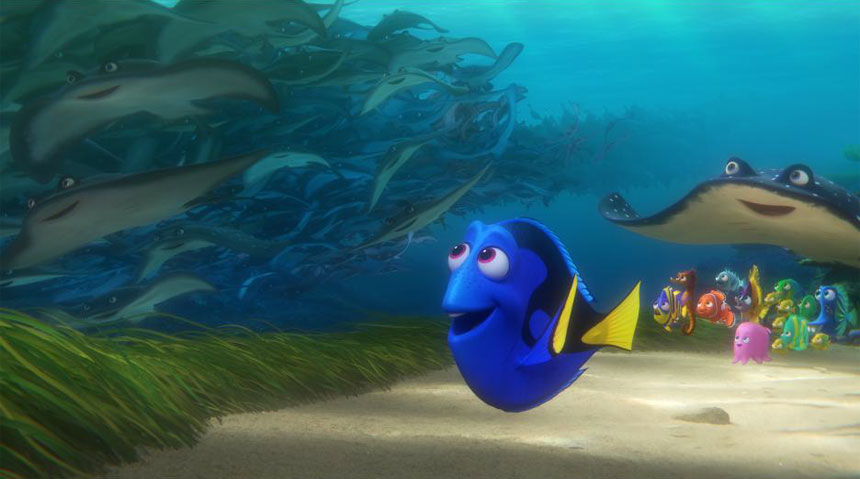 Finding Dory Photo 3 - Large