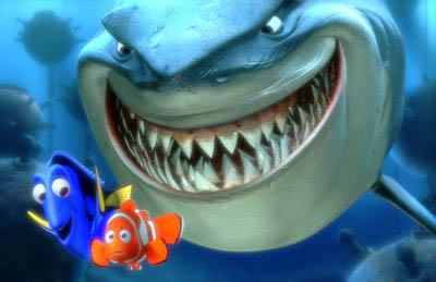 Finding Nemo Photo 7 - Large