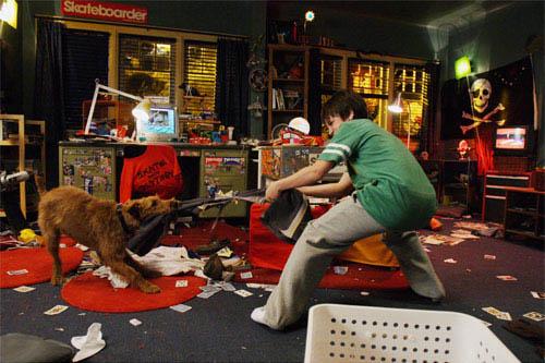 Firehouse Dog Photo 3 - Large