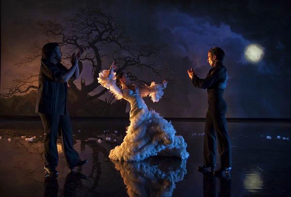 Flamenco, Flamenco Photo 18 - Large