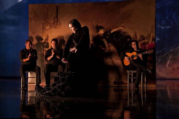Flamenco, Flamenco Photo 8 - Large