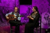 Flamenco, Flamenco Photo 10