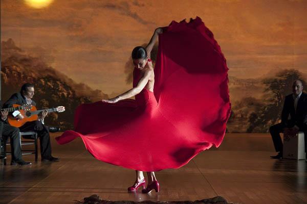 Flamenco, Flamenco Photo 13 - Large