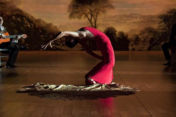 Flamenco, Flamenco Photo 14 - Large