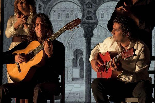 Flamenco, Flamenco Photo 15 - Large