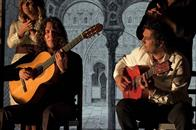 Flamenco, Flamenco Photo 15