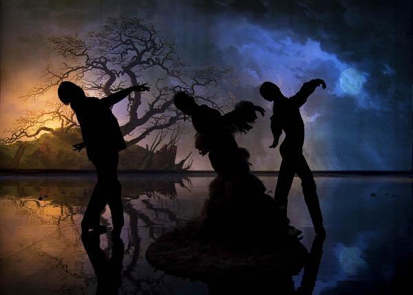 Flamenco, Flamenco Photo 21 - Large