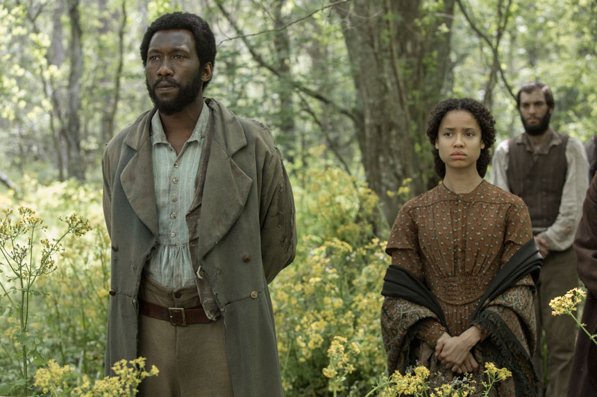 Free State of Jones Photo 8 - Large